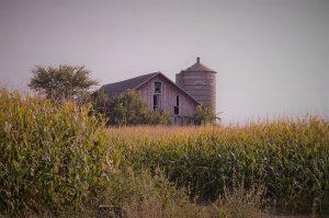 photo shows a serene desert farmhouse